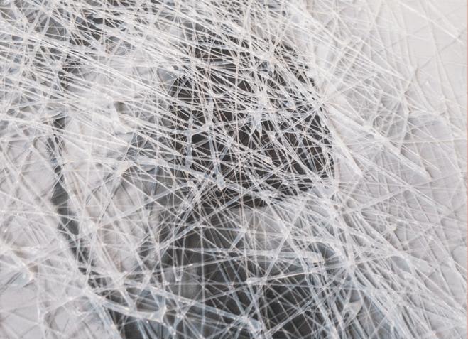 Mycelia Titelbild